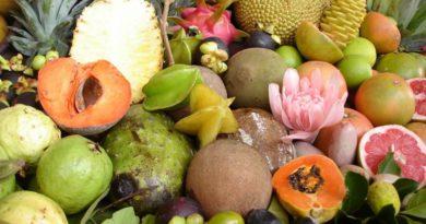 Markmið og næring